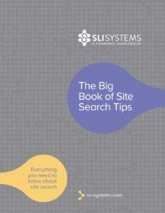 Ecommerce Site Search Tips Strategies ebook